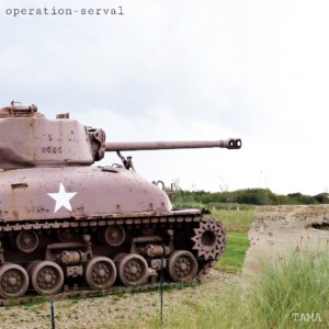 operation serval
