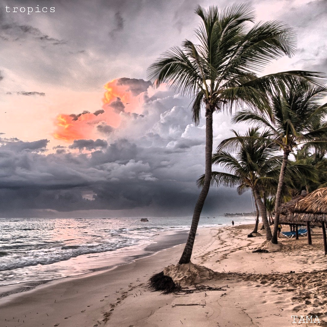 International Day of the Tropics