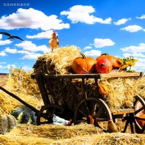 Farmers Day