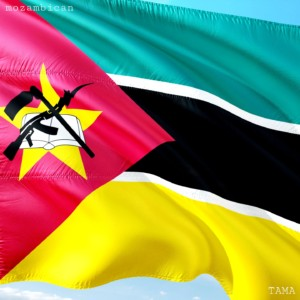 Armed Forces Day in Mozambique