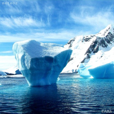 Antarctic Meteorites